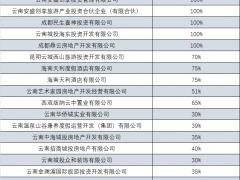 """云南城投挂牌转让20家公司股权 大股东继续""""托底""""?"""