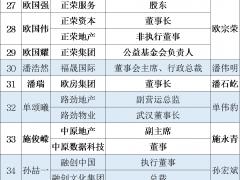 """26岁杨武正""""一肩挑""""蓝光发展"""
